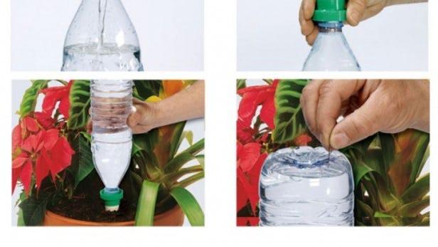 bottiglia-irrigare-piante-durante-le-vacanze