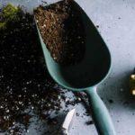 come-concimare-le-piante