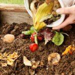 come-fare-il-compost